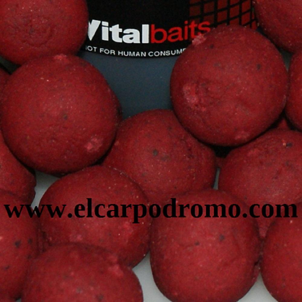 VITALBAITS BOILIES SPICY KRILLAM 14 MM 1KG EL CARPODROMO