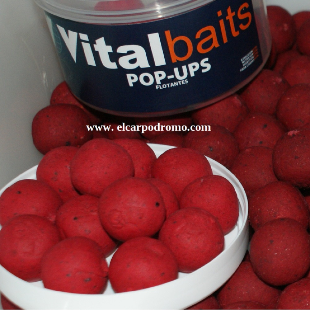 VITALBAITS POP UPS SPICY KRILLAM 14 MM EL CARPODROMO