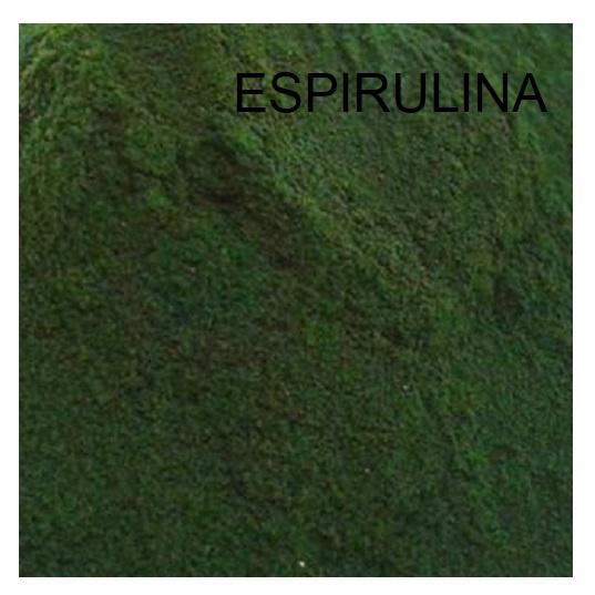 ESPIRULINA . EL CARPODROMO