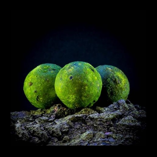 massive baits boilie green mulberry 18mm 1kg big